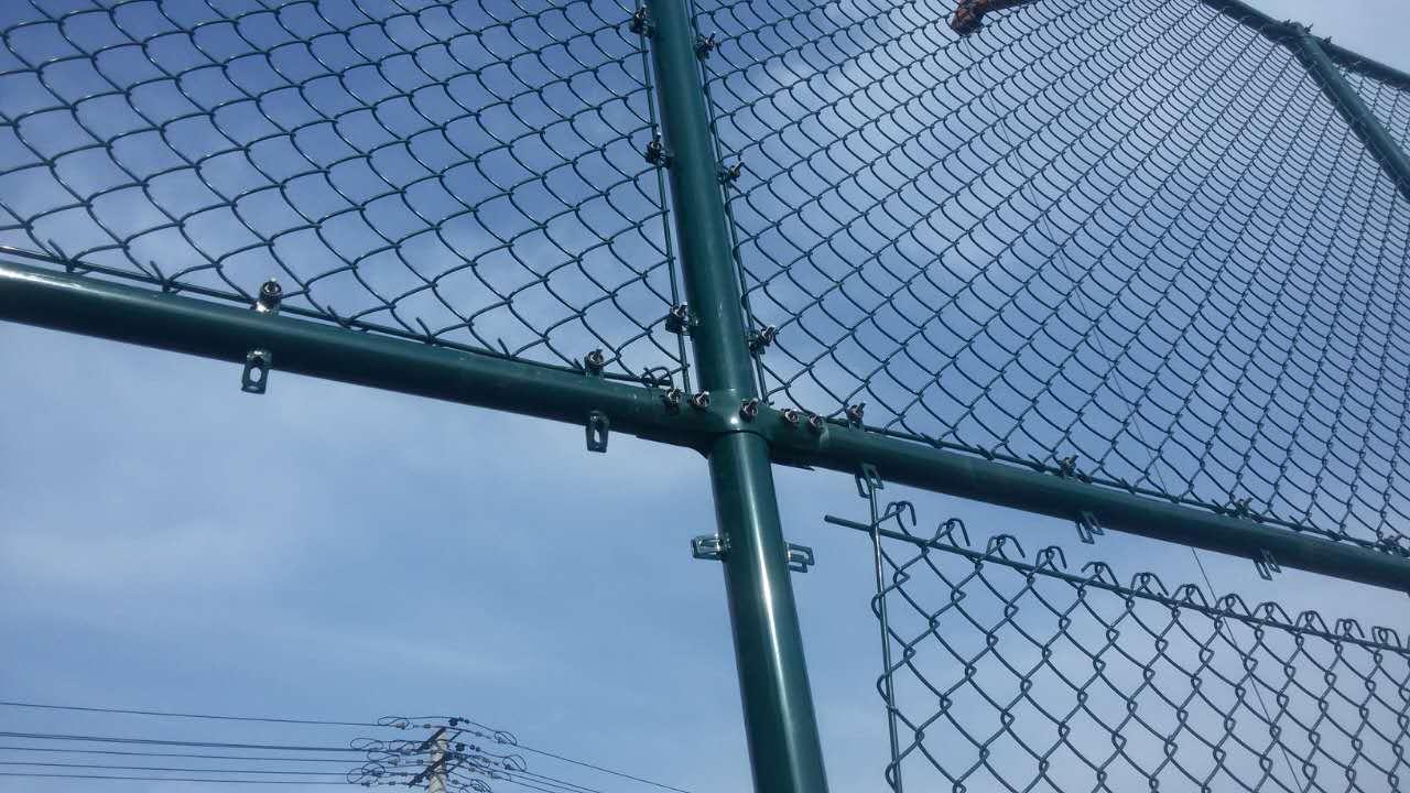 球场围网效果图